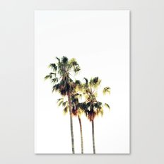 The Palms No. 3 Canvas Print
