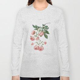 Rosa Multiflora Long Sleeve T-shirt