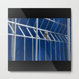 Spider In The Web On Metal Fence Metal Print