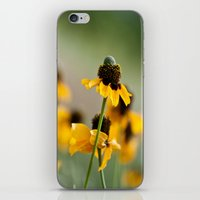 hats iPhone & iPod Skins featuring Yellow hats by Julia Goss Photography