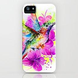Flaying Rainbow iPhone Case