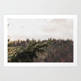 Tree-city Art Print