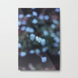 Backyard Flowers (2) Metal Print