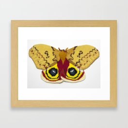 Knitted Automeris Io Moth Framed Art Print