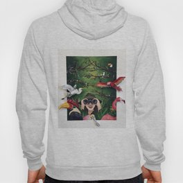 Bird Obsession Hoody