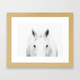 White Horse in fog Framed Art Print