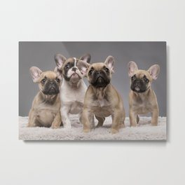 Puppy Gang Metal Print
