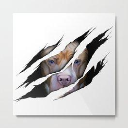 Pit Bull Torn Effect illustration Metal Print