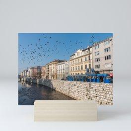 Sarajevo Photography, Riverside Tram and Pigeons Scene, Bosnia Photograph Mini Art Print