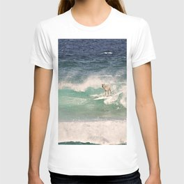 ALPACA - SURFING HAWAII T-shirt