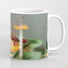 Red Skimmer or Firecracker Dragonfly With Lantana Background Coffee Mug