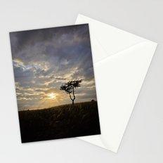 Phoenix Sunset Stationery Cards
