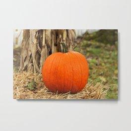 Pumpkin and the leaf Metal Print