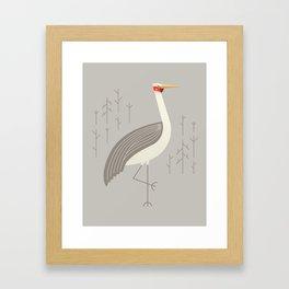 Brolga, Bird of Australia Framed Art Print