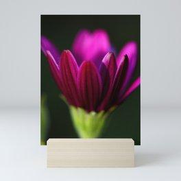 Partially Open Purple Mini Art Print