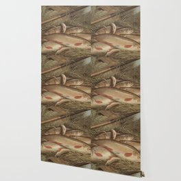 Vintage Painting of Caught Brook Trout (1868) Wallpaper