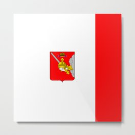 flag of Vologda Metal Print