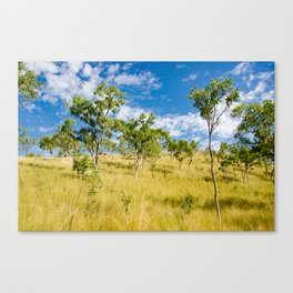 Savannah landscape Canvas Print