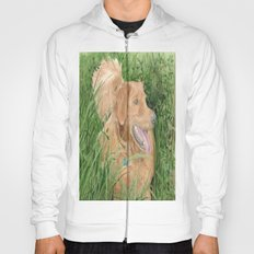 Golden Retriever Conan Hoody