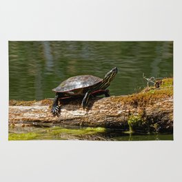 Painted Turtle on a Log - Photography Rug