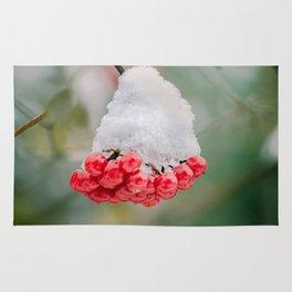 Frozen berries Rug