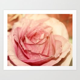 Roses are not always red Art Print