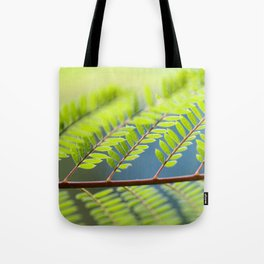 Jacaronda Mimosifolia Serie 1 No. 3 Tote Bag