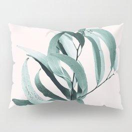 Eucalyptus II - Australian gum tree Pillow Sham