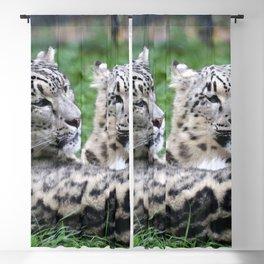 Aqua_Leopard_20180106_by_JAMColorsSpecial Blackout Curtain
