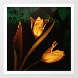 Tulips of the golden age Art Print