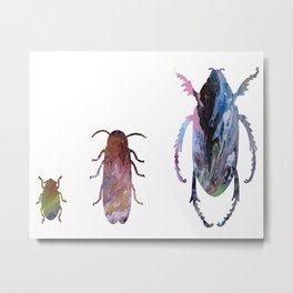 3 beetles Metal Print