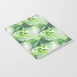A Delicate Sweetgum Leaf - IA Notebook
