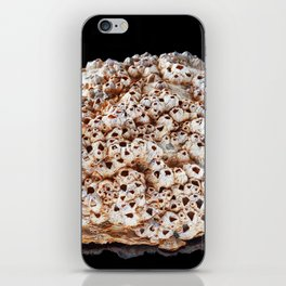 Pearl shell on bright black background iPhone Skin