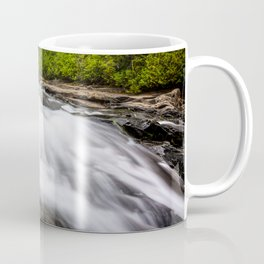 Rush - Paradise River Rushes to Falls in Mt. Rainier National Park Coffee Mug