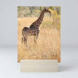 African Giraffe on a Bright Day Mini Art Print
