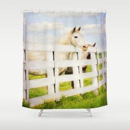 Barn Yard Dreamer Shower Curtain