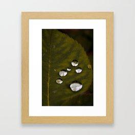 Pearls Of Life Framed Art Print