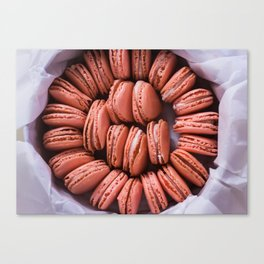 Pink Peppermint French Macaron Canvas Print
