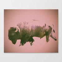 bison Canvas Prints featuring Bison by Phil Flaig