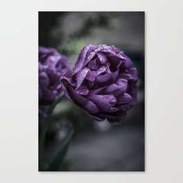 Flowers in the Spring Canvas Print