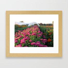 Flower Farm Framed Art Print