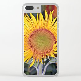 Floating SUN Clear iPhone Case