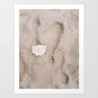 Rose in the Sand Art Print