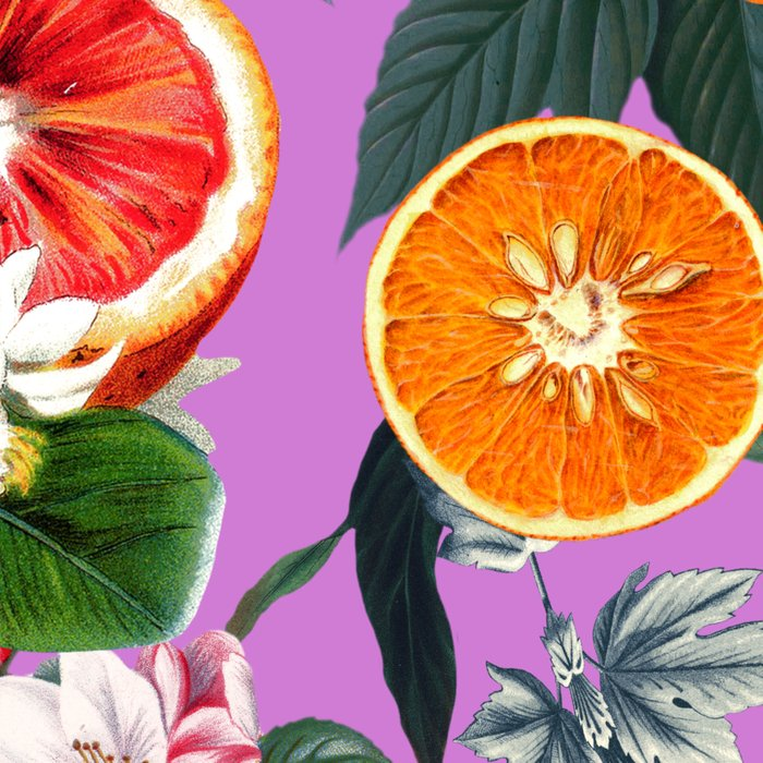Vintage Fruit Pattern X Leggings