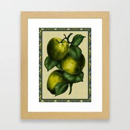 Painted Green Apples Framed Art Print