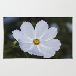 White Cosmos Rug