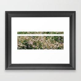 Bloomed Framed Art Print
