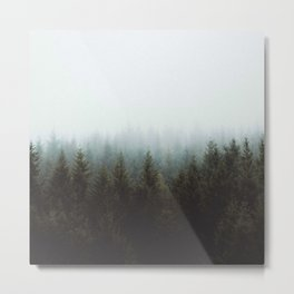 Fog in a Forest Metal Print