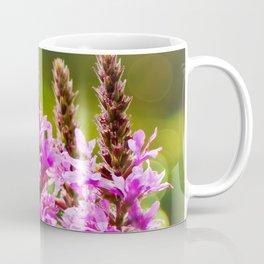 Purple Loosestrife Coffee Mug