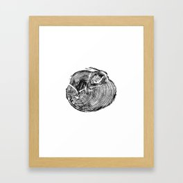 Scotts Pine Framed Art Print